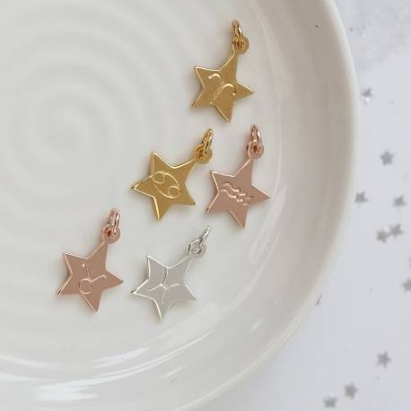 zodiac star charms in sterling silver, rose gold and gold, all star signs available to add to necklace or locket